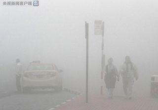 阿联酋大雾 导致迪拜机场部分航班出现延误