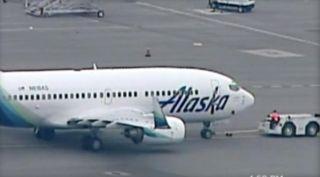 """老鼠""""潜入""""飞机 阿拉斯加航空被迫取消航班"""