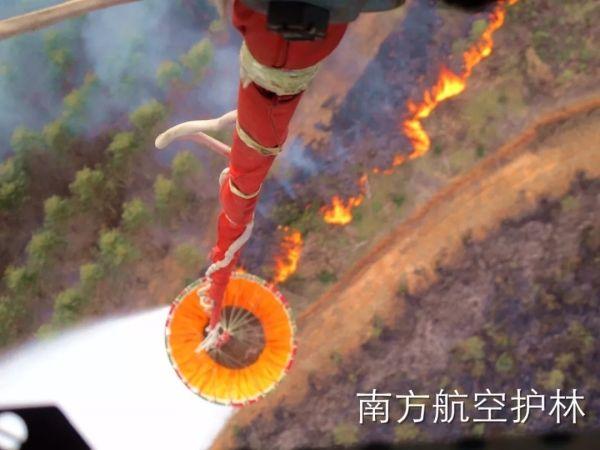 南航总站百色站梧州基地及时扑救一起森林火灾
