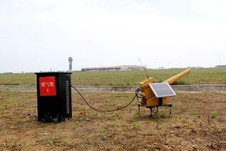 合肥机场2017年鸟防工作创佳绩