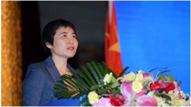 柳芳在首届亚太地区民航部长级会议上致辞陆二佳摄