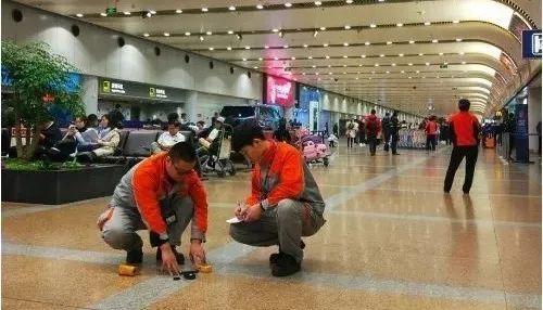 """首都机场探索驱鸟剂""""新用法"""