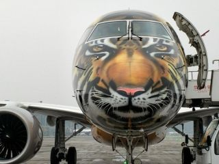 猛虎来了 巴航工业E190-E2飞机首次到访中国