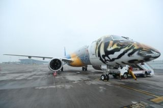 2月12日早上巴航工业一架身披猛虎涂装的E190-E2飞机降落在重庆江北国际机场,首次飞抵中国 摄影:莫晓健