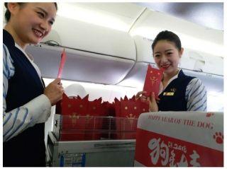 华夏航空云鸽示范组主题航班给旅客拜年