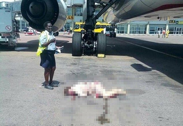 阿联酋航空空姐打开紧急出口跳下飞机受重伤