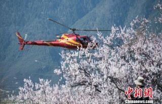 西藏林芝雅鲁藏布大峡谷开启空中观光模式