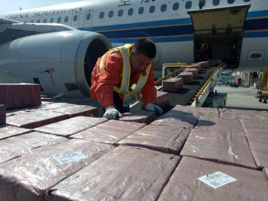 20分钟装卸4.7吨 南航货运保航班正点起飞