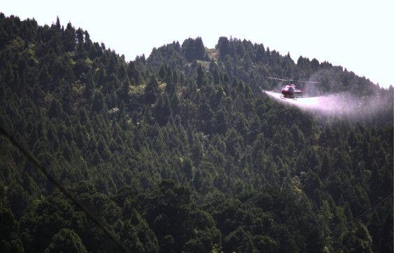投资30余万!剑阁县完成林业有害生物飞防作业