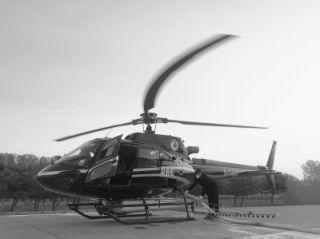 """""""小松鼠""""直升机北京空中捉虫记"""