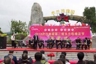 498元!游客可乘直升机游览武汉玫瑰花海