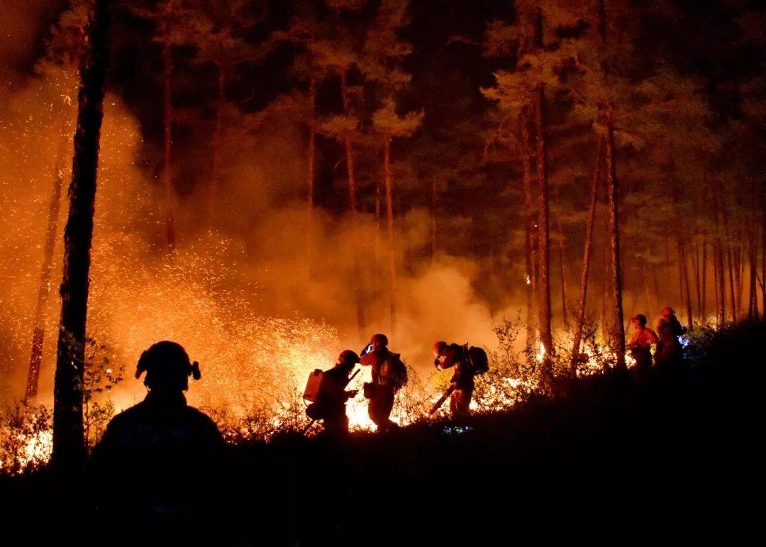 大興安嶺雷擊引發7起森林火災 7架飛機參與撲救