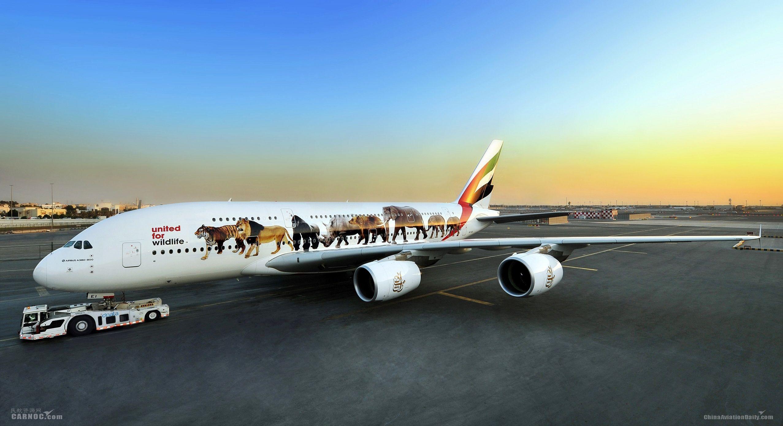 图:带有保护野生动物特殊涂装的一架阿联酋航空a380客机   迪拜—