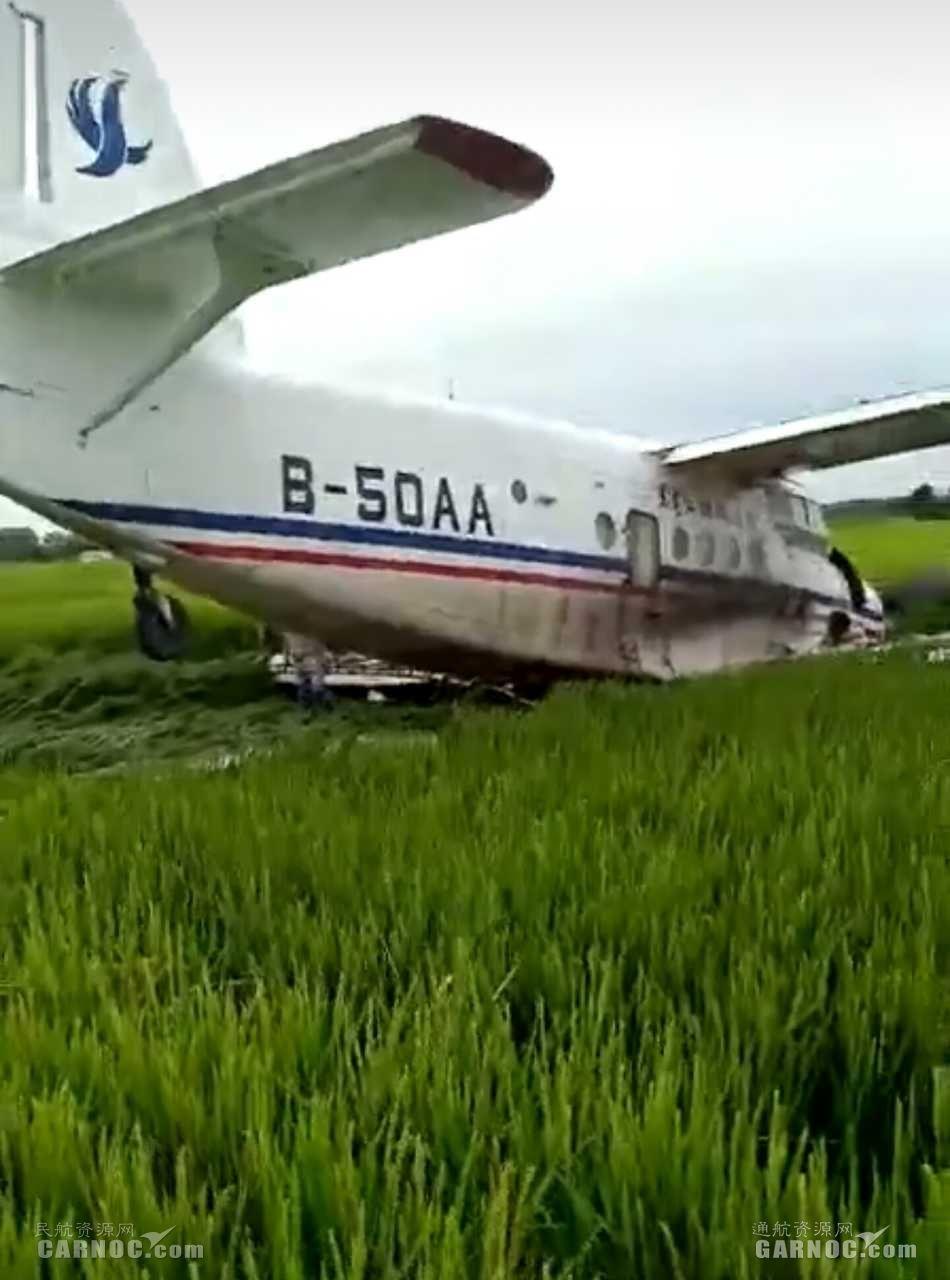 黑龙江佳木斯一架运5飞机迫降稻田 无人受伤