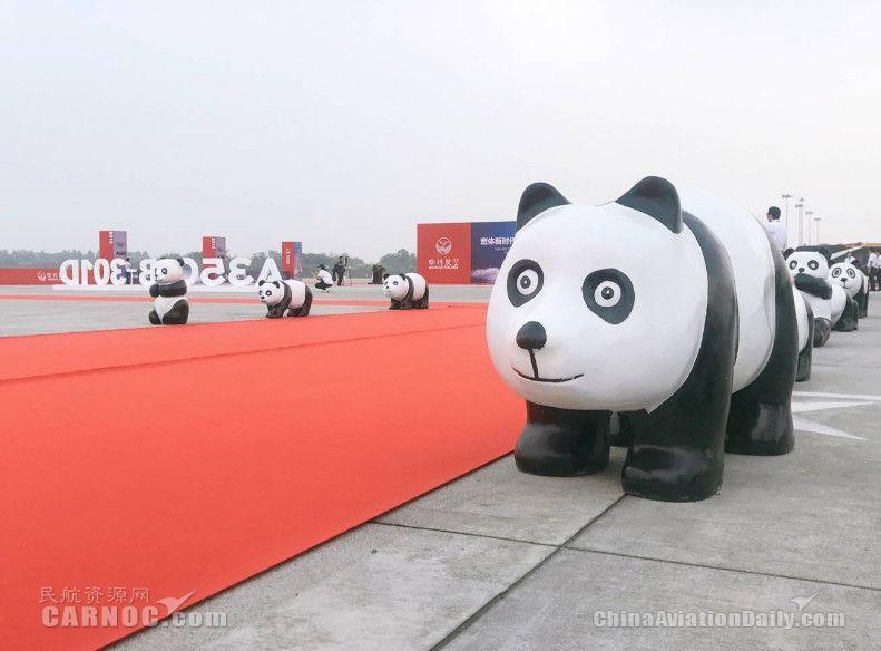 现场的熊猫