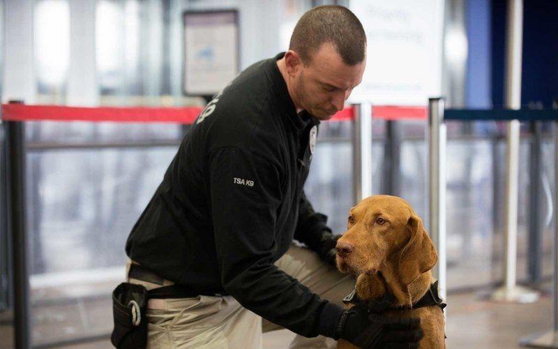 TSA将继续在美国小型机场对旅客进行安检