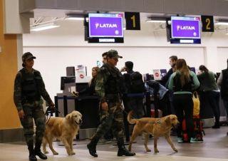 多架航班备降 系男子因行李被弄丢报假警泄愤