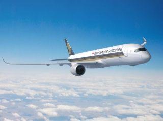 新加坡航空携手峡谷牧场 提高航线飞行体验