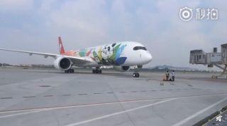 四川航空首架熊猫涂装A350飞机首航广州