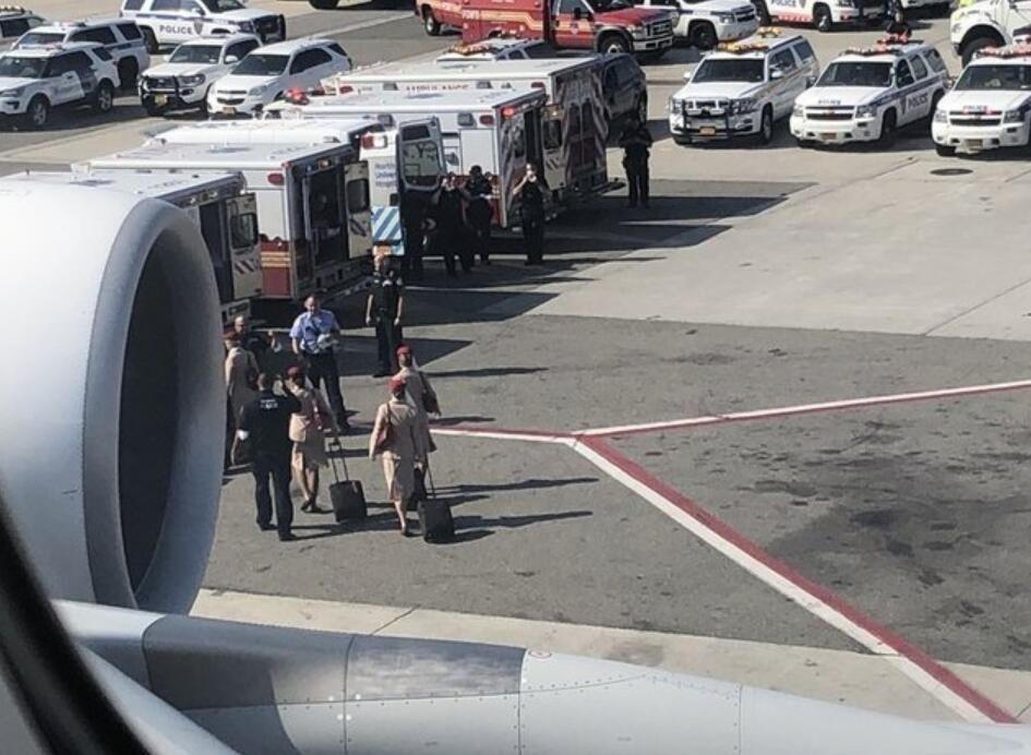 图:阿联酋客机被隔离  图片来源:gothamist网站
