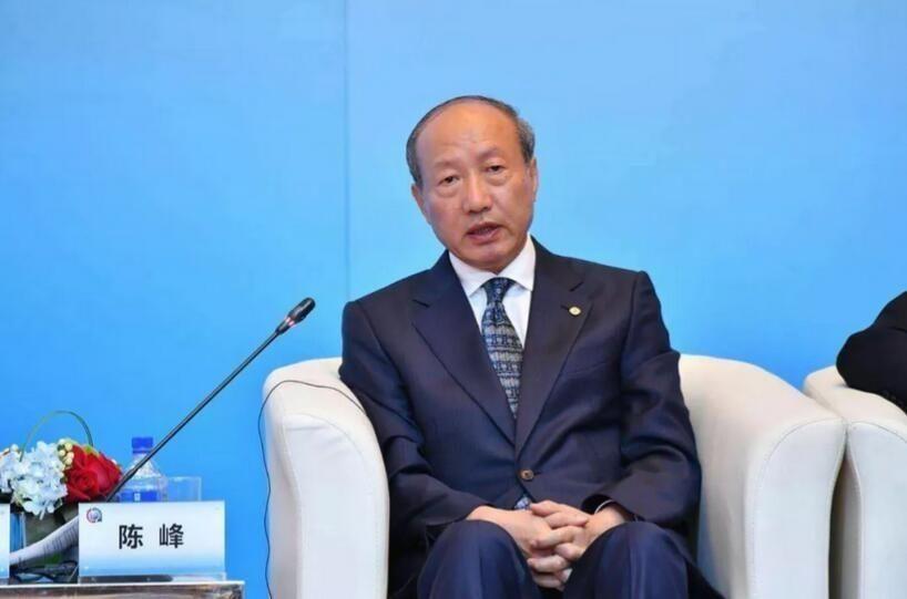 访第六届中非企业家大会嘉宾――海航董事长陈峰