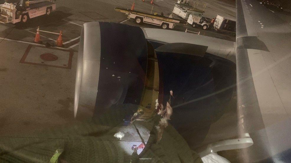 达美航空客机遭遇鸟击被迫返航 无人受伤
