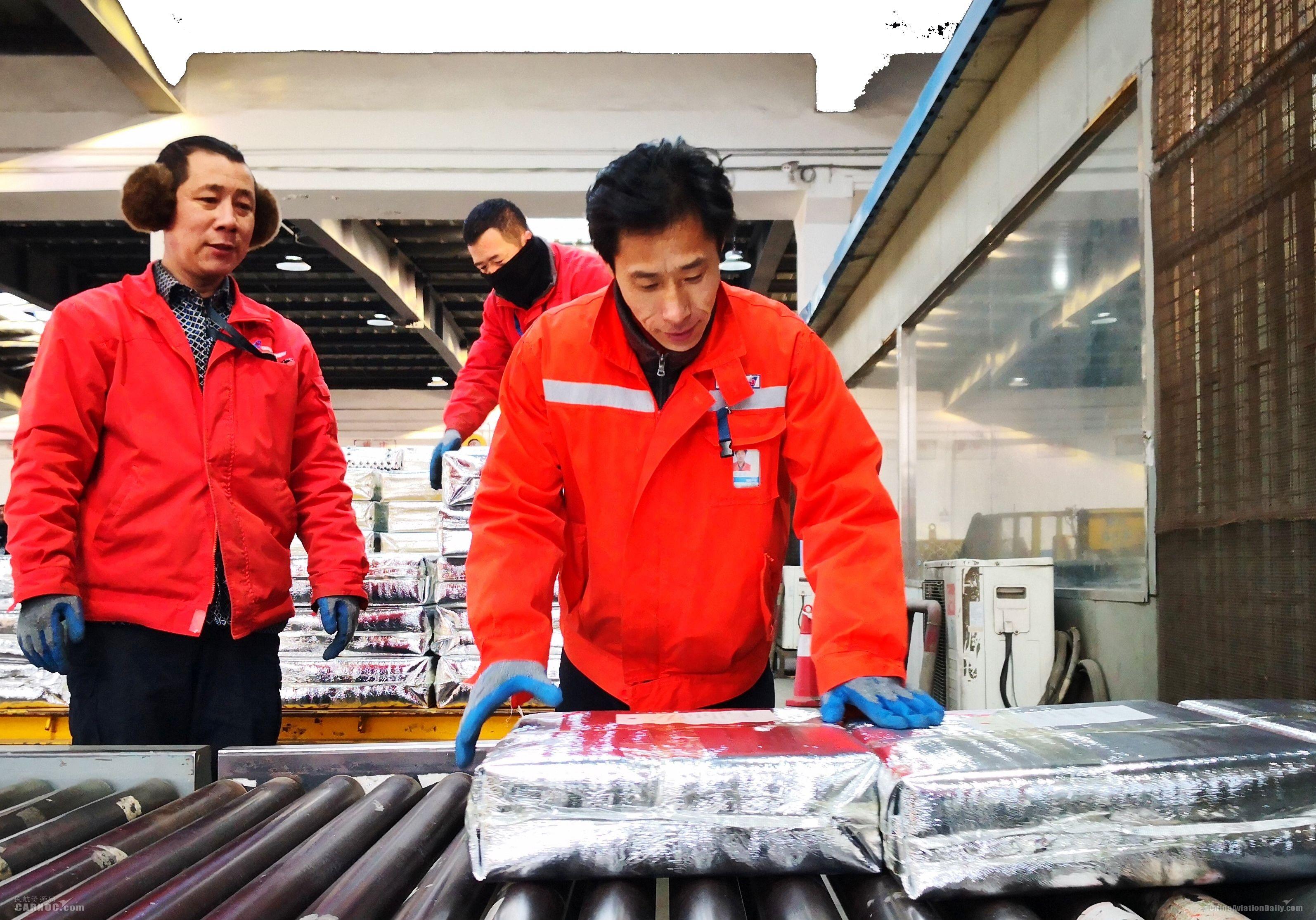 网红草莓成南航大连货运春运主角