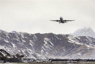 探寻揭秘:高高原上空的雪域雄鹰