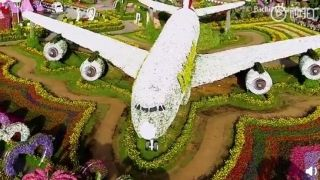 鲜花版阿联酋航空A380飞机