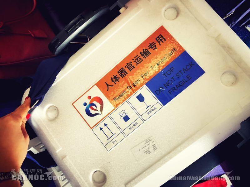生命的快线 上航全力保障人体器官紧急运输