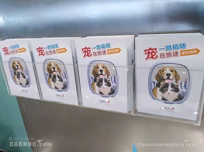 """深圳航空一路""""箱""""随行李服务品牌-宠物托运指南手册"""