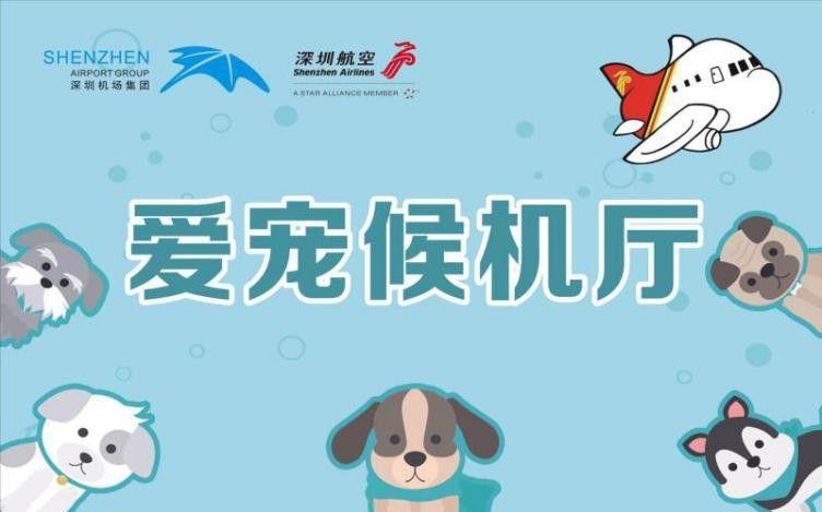 创新服务案例:深圳机场国内货站爱宠候机厅服务