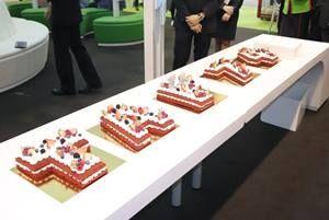 葡萄牙航空74周年生日庆典