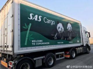 丹麦驻华大使全程护送两大熊猫坐飞机去新家