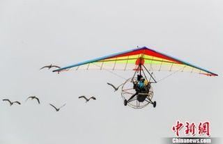 以飞行者大会为媒 11个重大项目落户武汉开发区