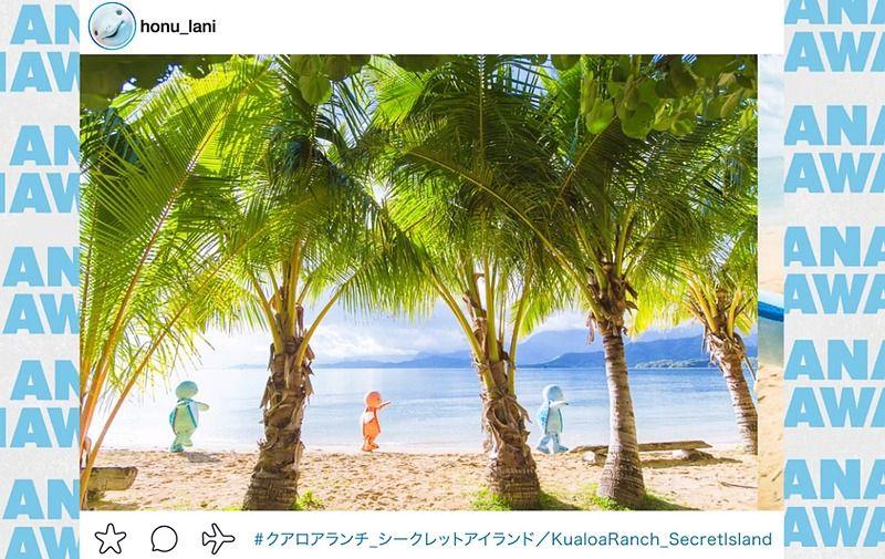 除了以Instagram风格介绍夏威夷的旅游目的地外,它还包含有关HONU(海龟)保护的信息。 摄影:截图