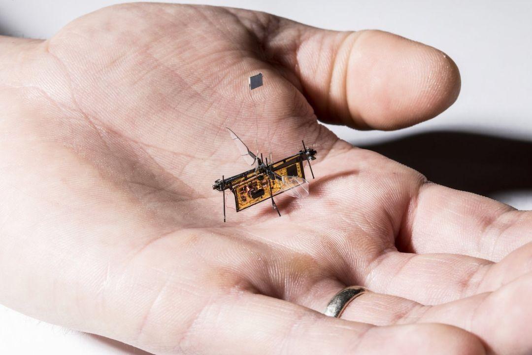 摆脱电线 太阳能驱动微机器人无束缚飞行