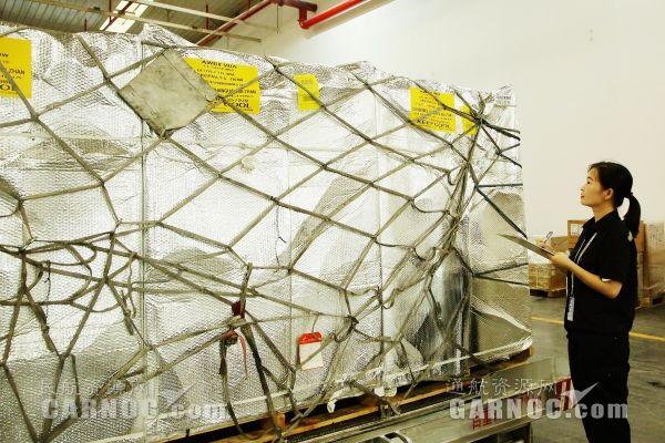 100吨进口车厘子!长沙机场迎首架747进口水果包机