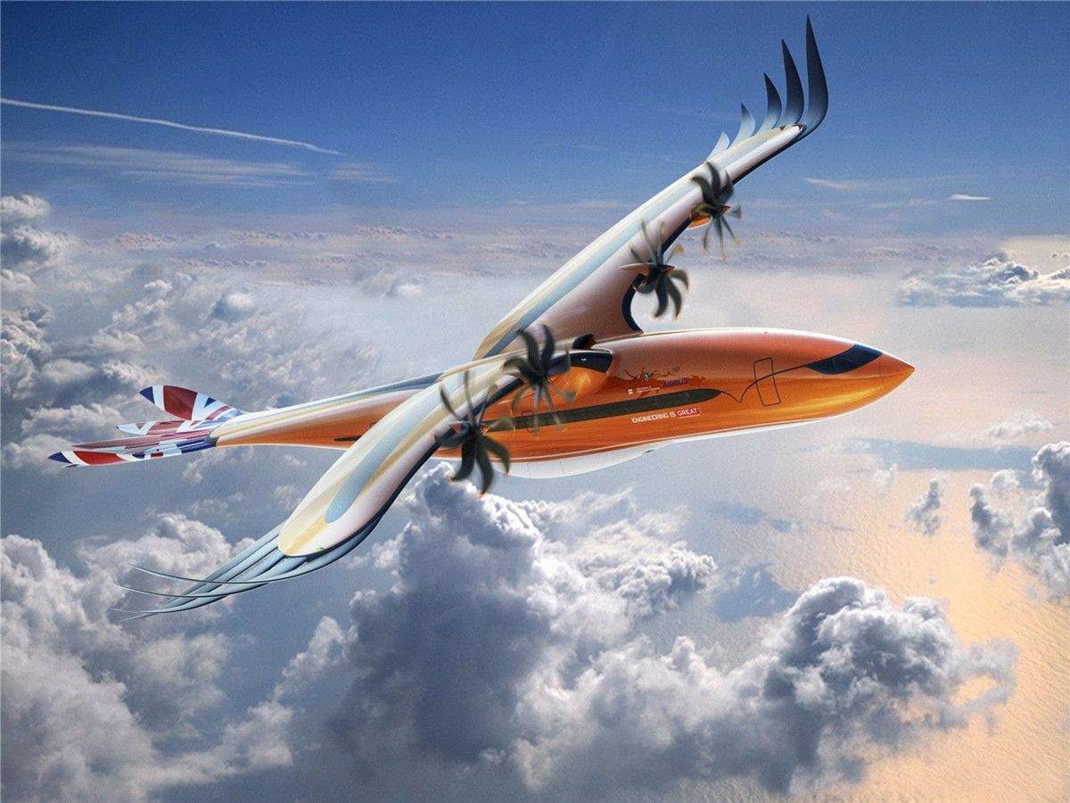 猛禽来袭 空客推出仿生学概念客机设计