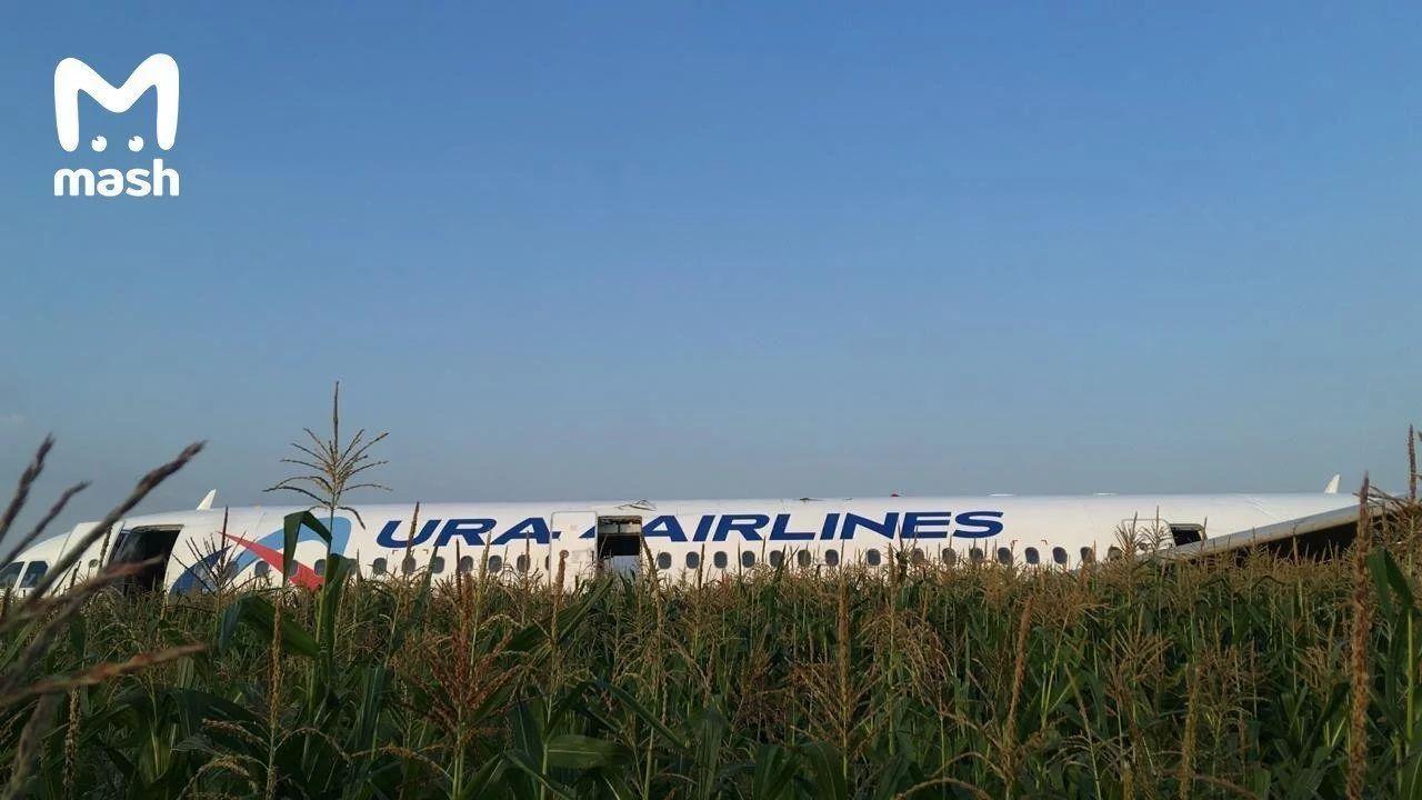 视频|乌拉尔航空客机双发失效成功迫降 10多人受伤
