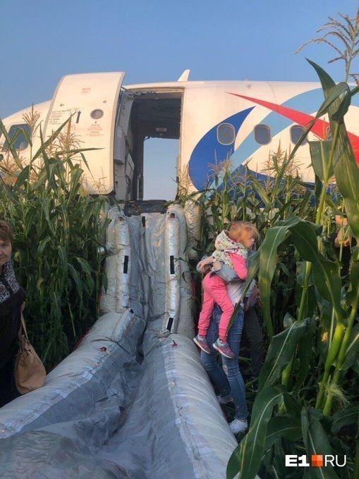 乌拉尔航空客机双发失效成功迫降 图片来源:JACDEC