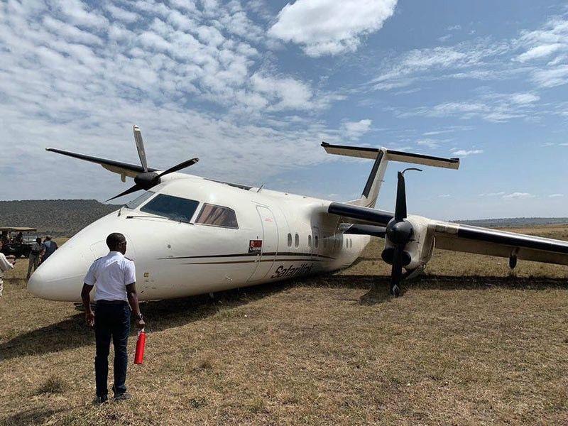 肯尼亚一架飞机降落时与角马相撞,机上乘客均未受伤