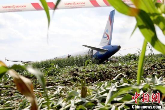俄罗斯迫降玉米地的客机准备进行拆卸工作