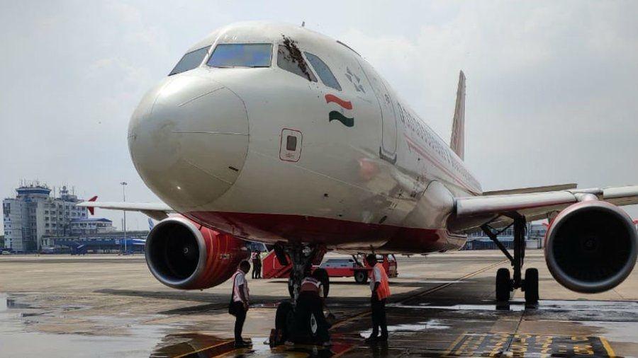 印度航空飞机上发现蜜蜂 航班被迫再次延误