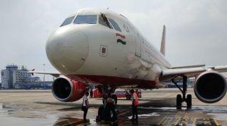 印度航空飛機上發現蜜蜂 航班被迫再次延誤
