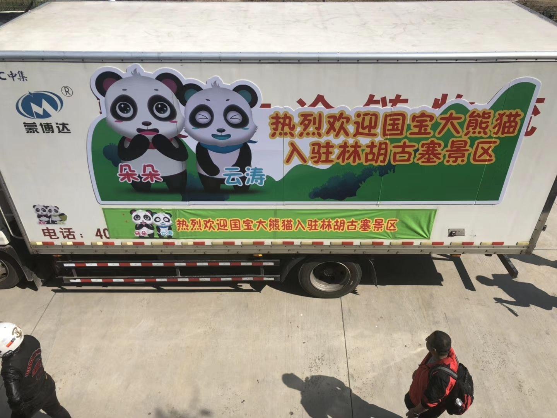 内蒙古民航地服公司货运部倾情保障国宝大熊猫抵呼