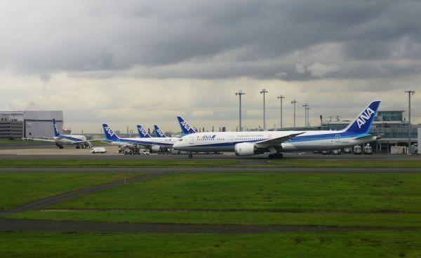 中日航班占日本国际航线1/4 日航全日空面临激烈竞争