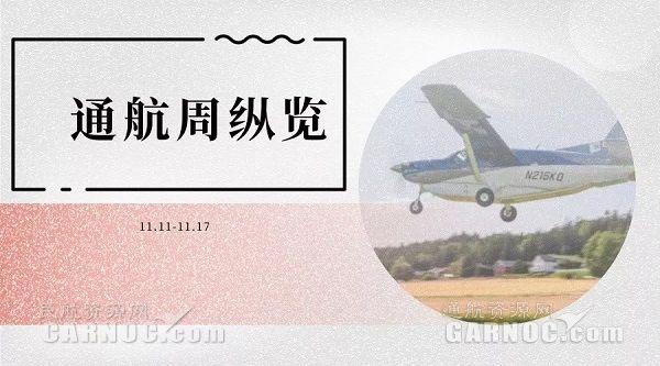 企業欠薪飛機被查扣 直升機驚擾天鵝掀地域口水戰