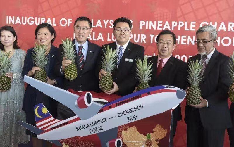马来西亚菠萝专机启程 目的地:中国!