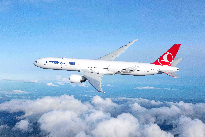 土耳其航空2019年11月上座率达82.3%